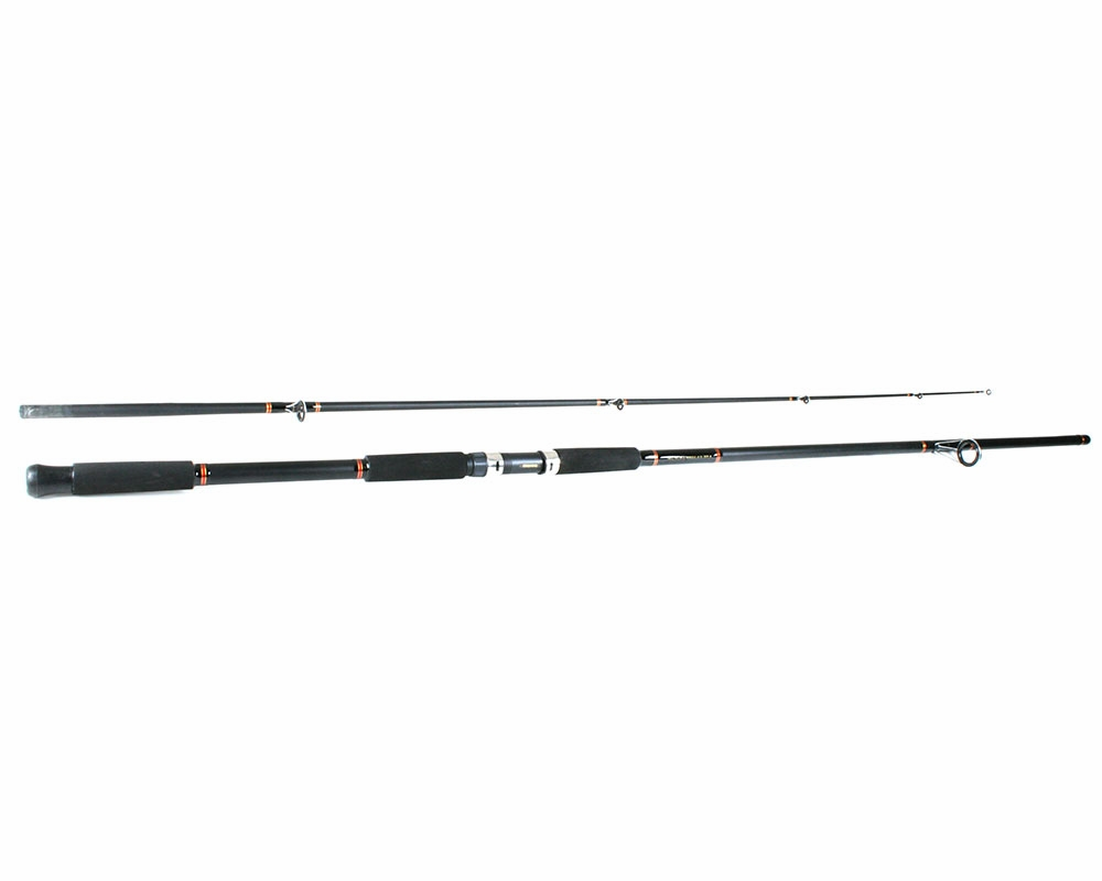 Daiwa opus plus a reel daiwa beefstick rod combo for Surf fishing rod and reel