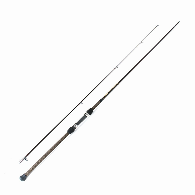 Lamiglas ron arra surf pro spinning rods for Lamiglas fishing rods