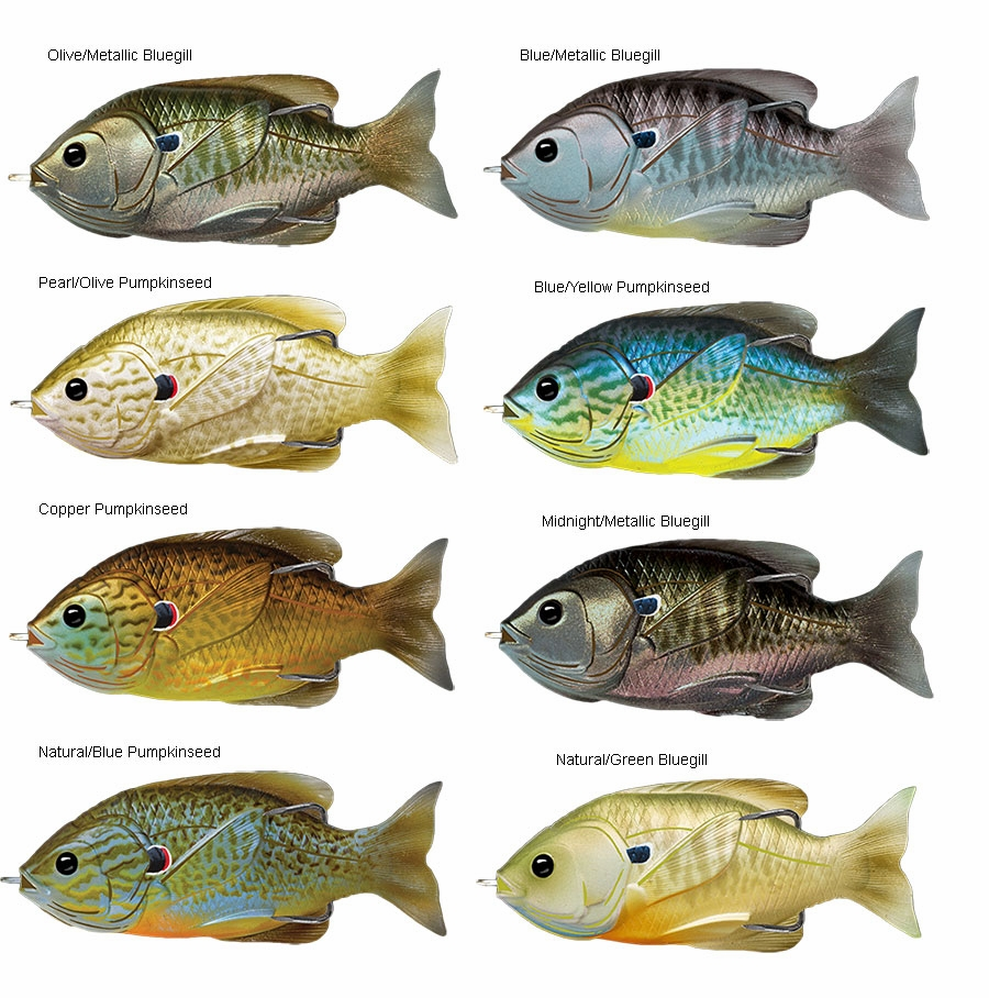Livetarget Sunfish Hollow Body Top Water Lures Tackledirect Tshirts Shirts And Custom Clothing