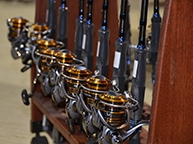Saltwater Fishing Rods, Reels, Lures, Lines & Tackle   TackleDirect