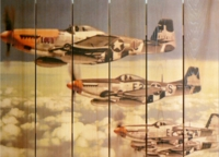 P-51 Mustangs Indoor Outdoor Art - Large