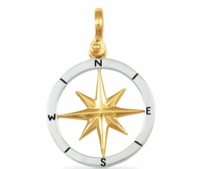 Silver & Gold Compass Rose Pendant