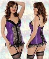 Plus Size Corset, Panty & Stockings Set