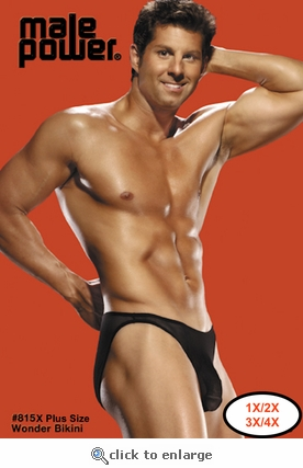 Plus Size Men's Sheer Bikini Underwear