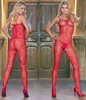 Queen Size Bodystocking Floral Lace