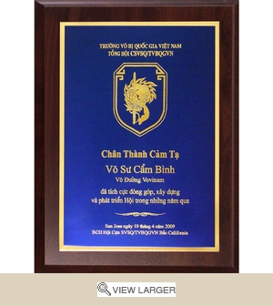 Award Plaque 9