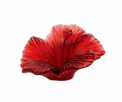 Daum Crystal Hibiscus Flower - Red