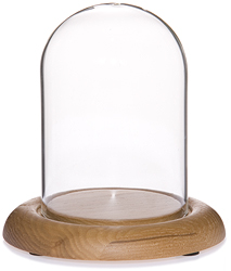 "Glass Dome with Oak Base - 3"" x 4"""