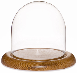 """Glass Dome with Oak Base - 5.5"""" x 5.5"""""""