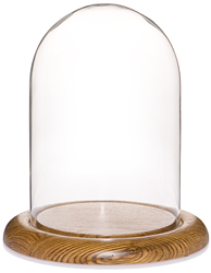 """Glass Dome with Oak Base - 5.5"""" x 8"""""""