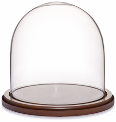 "Glass Dome with Walnut Base - 8"" x 8"""