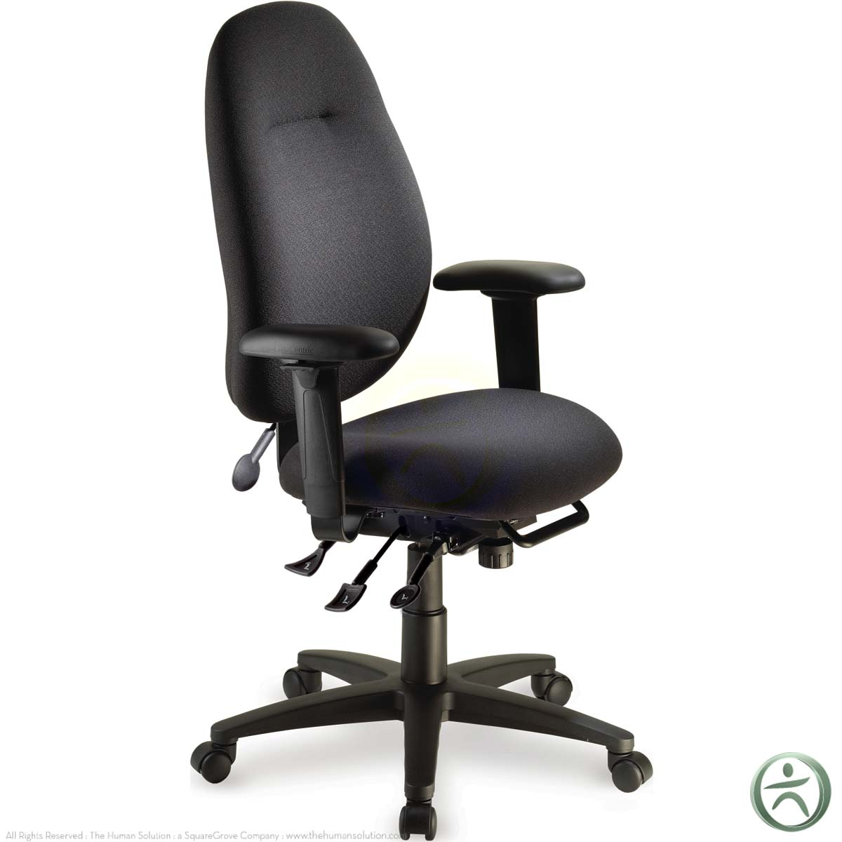 ergocentric ecentric ergonomic office chair shop. Black Bedroom Furniture Sets. Home Design Ideas