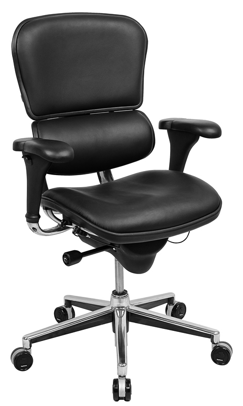 raynor chair replacement parts raynor ergohuman le9erg high back executive chair eurotech. Black Bedroom Furniture Sets. Home Design Ideas