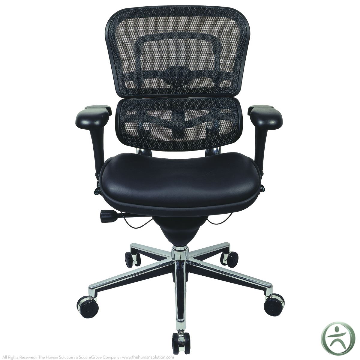 raynor ergohuman chair mesh chair with leather seat lem6erglo. Black Bedroom Furniture Sets. Home Design Ideas