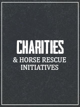 Charities and Horse Rescue Initiatives