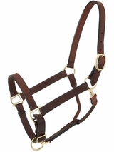 Churchill Stable Halter with Snap