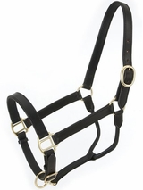 Royal King Leather Stable Halter