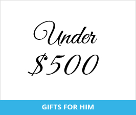 Great Gifts for Him - Under $500