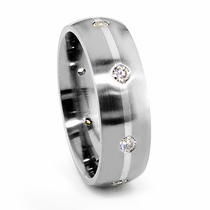 ORIS Titanium and Diamond Wedding Band