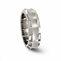 TEMPLAR Titanium Ring 8mm by Edward Mirell