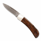 Woolly Mammoth Bone and Damascus Steel Knife - 3""