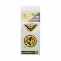 Maccabi Club America Temporary Tattoos
