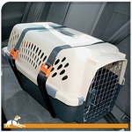 Dog Carrier Security Belts