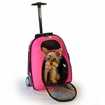 Dog Carriers & Crates