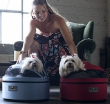 Sleepypod Pet Carrier / Bed