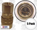 "Coilhose 150 5pk 1/4"" NPT Female M Coupler Body Air Fitting"