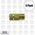 "Coilhose 160 5pk 1/4"" NPT Female T Coupler Body Air Fitting"