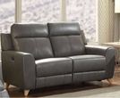 Cayden Loveseat (Power Motion) in Gray Leather-Aire Match - Acme Furniture 54201