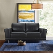Everly Contemporary Loveseat in Genuine Black Leather w/ Brushed Stainless Steel Legs - Armen Living LCEV2BL