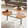 INK+IVY Arcadia Coffee Table in Natural - Olliix FPF17-0339