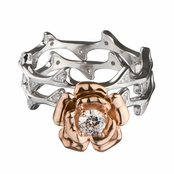 Esmerelda's Rose Gold Flower Stem Ring Set