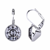 Thera's 9mm Round Cut Crystal Leverback Earrings - Grey