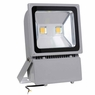 100w LED Outdoor Display Flood Light Fixture Warm White