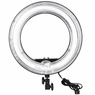 19in 75W Fluorescent Dimmable Ring Light for Video Photo