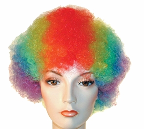 Bargain Afro Wig Costume