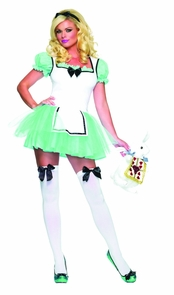Alice Enchanted Extra Small Costume