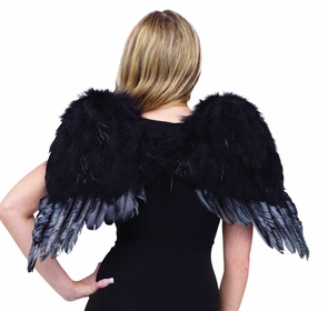 Angel Wings Feathr Chld Blk Costume