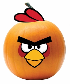 Angry Bird Red Bird Push-in Costume