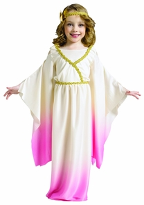 Athena Pink Ombre Toddler 3-4t Costume