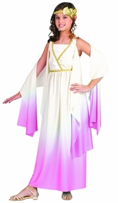 Athenus Pink Ombre Child 8-10 Costume