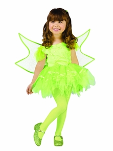 Ballerina Fairy Green 24mth-2t Costume