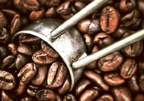 Best Sustainable Organic Coffee - Blue Mountain Comparable