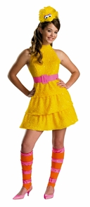 Girl's Big Bird Costume - Sesame Street Costume