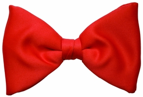 Bow Tie Formal Red Costume