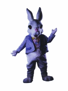 Buttermilk Bunny As Pictured Costume