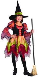 Child Fairy Witch Size Small Costume